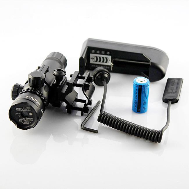 laser sight pistol