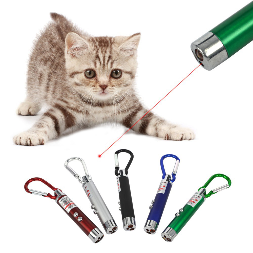 Delightful Cat Laser Pointer Pen Pictures Gallery