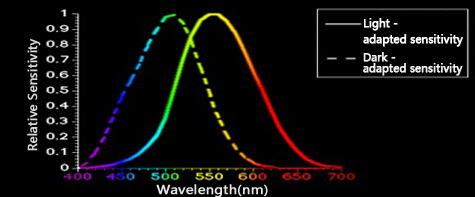 Picture of visible wavelength